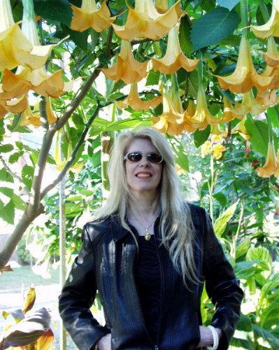 Dagmar with Golden Flowers